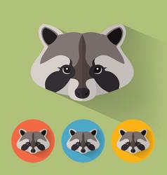 raccoon portrait with flat design vector image vector image