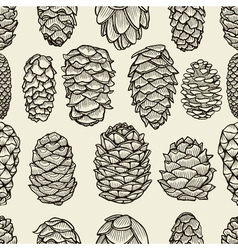 Seamless pattern with pine cones vector image