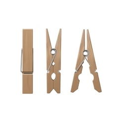 Set of wooden clothespins pegs front side view vector