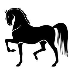 Proud horse vector