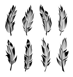 set of stylized bird feathers linear vector image vector image