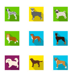 Sheepdog dachshund bernard and other web icon vector