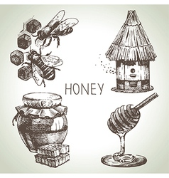 Hand drawn vintage honey set vector