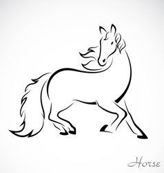 Image of an horse vector image