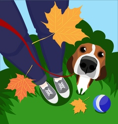A guy his dog and autumn leaves vector image