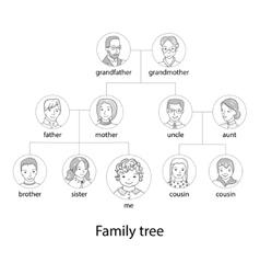 Family tree chart thin line style vector