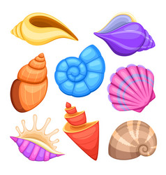 Ocean cockleshells cartoon sea shells vector