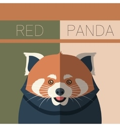 Red panda flat postcard vector