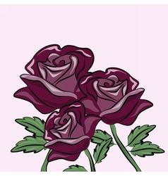 Roses flower background vector image vector image