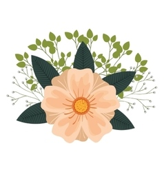 Floral decoration isolated icon design vector