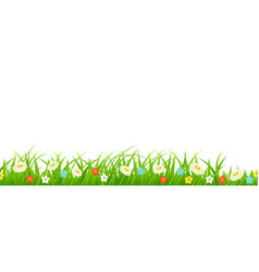 Grass foliage and flowers plants vector