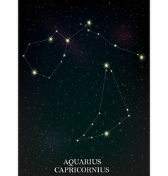 Aquarius and capricornius constellation vector