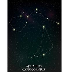 Aquarius and Capricornius constellation vector image