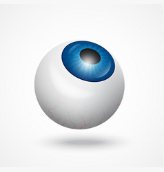 eyeball icon eyeball art eyeball symbol eyeball vector image