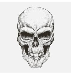 Scary skull of human vector