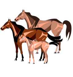 three horses standing isolated vector image vector image