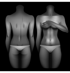 Women body template vector