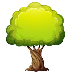 An old giant tree vector