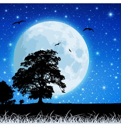 moon in night sky vector image