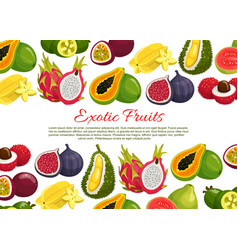 poster of tropical exotic fruits vector image vector image