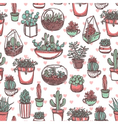 Succulents And Cacti Color Sketch Pattern vector image vector image
