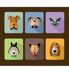 Big set of icons of dogs vector image vector image