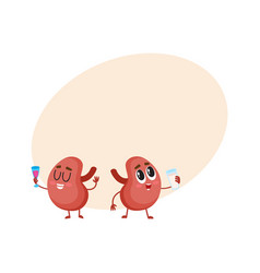 pair of cute and funny healthy human kidney vector image vector image