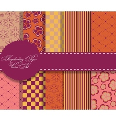 set of beaautiful paper for scrapbook vector image vector image