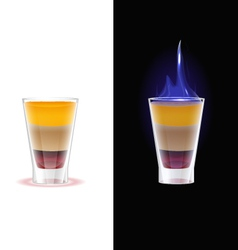 Shot drink b52 vector