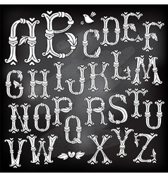 Whimsical Hand Drawn Alphabet Letters vector image vector image