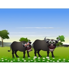 Buffalo cartoon with nature background vector
