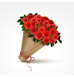 Bouquet of red roses isolated vector