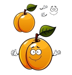 Fun cartoon apricot fruit character vector