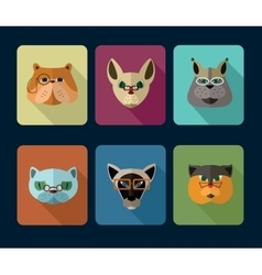 Big set of icons of cats vector