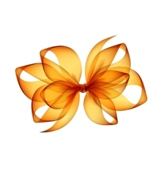 Orange yellow transparent bow top view close up vector