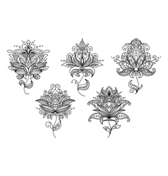 Persian and indian paisley floral elements vector