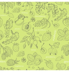 Seamless pattern with berries on a green vector