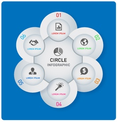 Circle info graphic vector