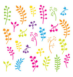 Floral collection with leaves and flowers vector