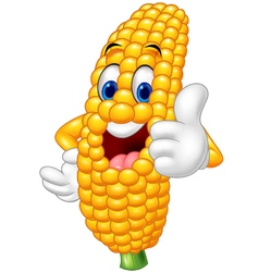 Cartoon happy corn giving thumb up vector