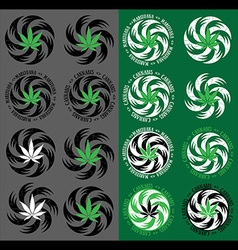 Marijuana cannabis leaf symbol textured background vector
