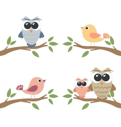 Set of owls and birds sitting on branch vector image