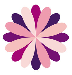 circular flower formed by petals dark and light vector image