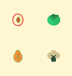 Flat icons broccoli litchi pawpaw and other vector