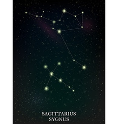 Sagittarius and sygnus constellation vector