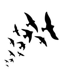 Silhouette flock of flying birds design vector