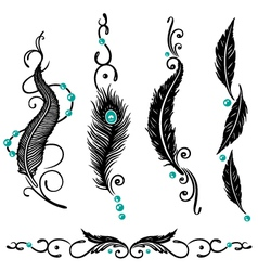 Indian feathers vector