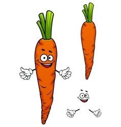 Colorful cartoon carrot vegetable character vector