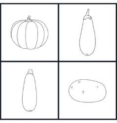 Icons potato eggplant zucchini pumpkin vector