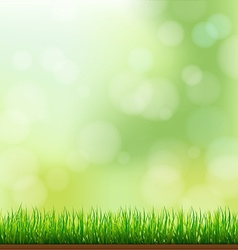 Natural green grass background with focus and vector
